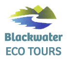 Blackwater Eco Tours